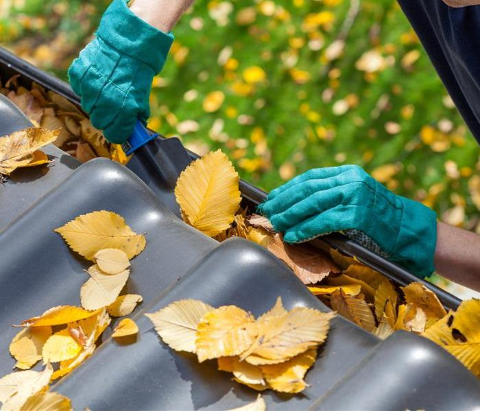 General Spring maintenance tips for the home