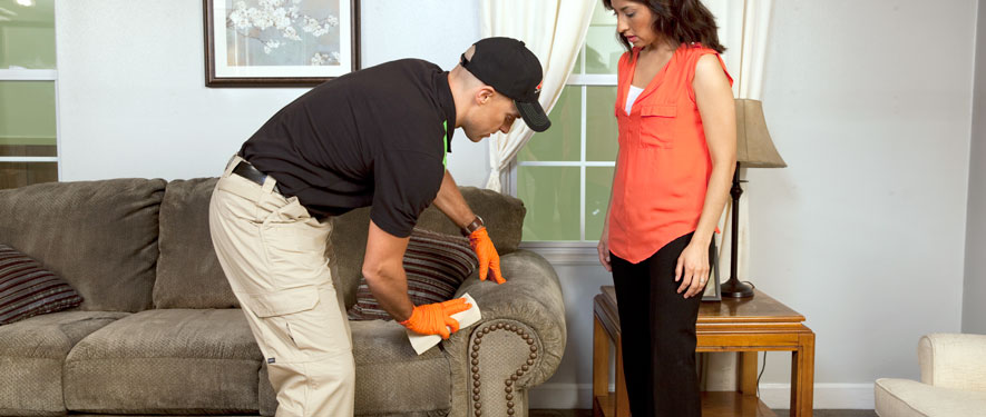 Edmonton, AB carpet upholstery cleaning