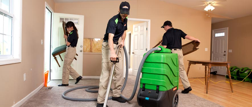 Edmonton, AB cleaning services